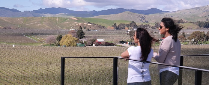 brancott wines in marlborough