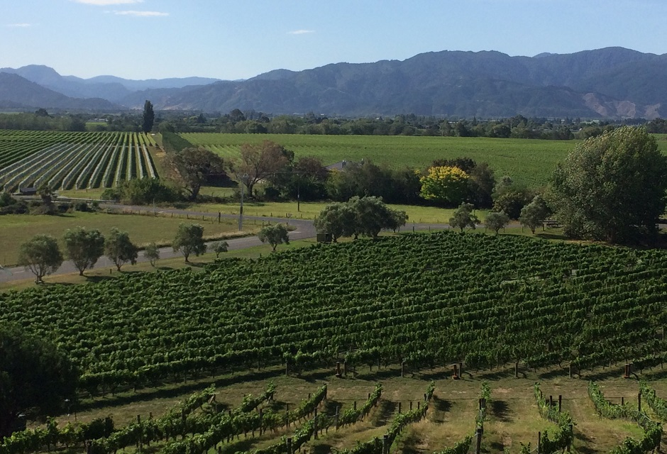 Private Wine and Gourmet Tours from Picton